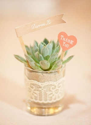 succulent-wedding-centerpieces-for-rustic-inspired-weddings