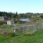RW vegetable garden