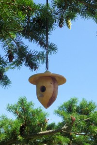 Acorn Birdhouse by Tim