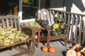 porch harvest
