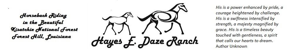 Horseback Riding in Central Louisiana