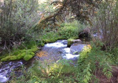 Lower Indiana Creek