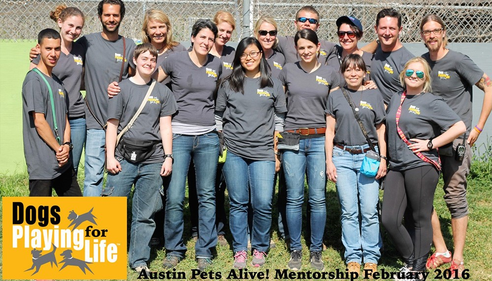 Austin Pets Alive Mentorship 2016