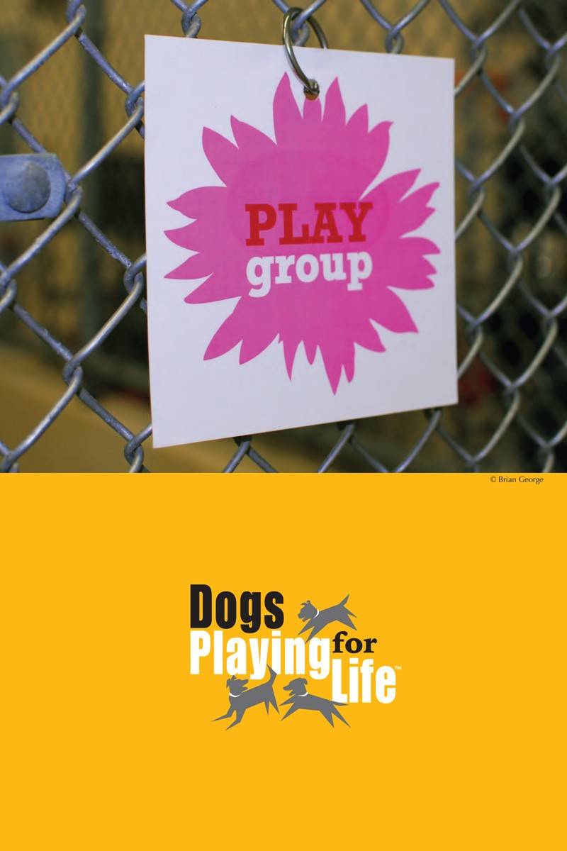 Dogs Playing for Life Resource Manual p3