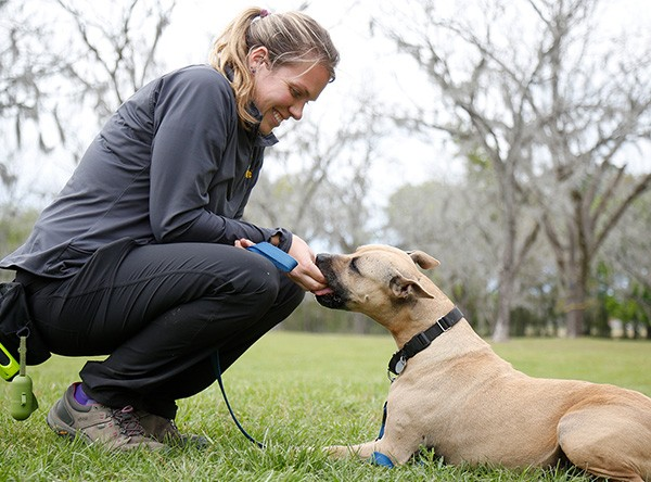 Ranger and Emily Canine Center Florida