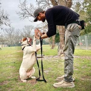 Josh Dubrule Canine Care Attendant