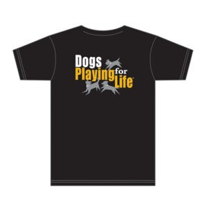 Playgroup Rockstar T-shirt Back