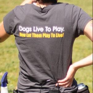 V Neck T-shirt Back