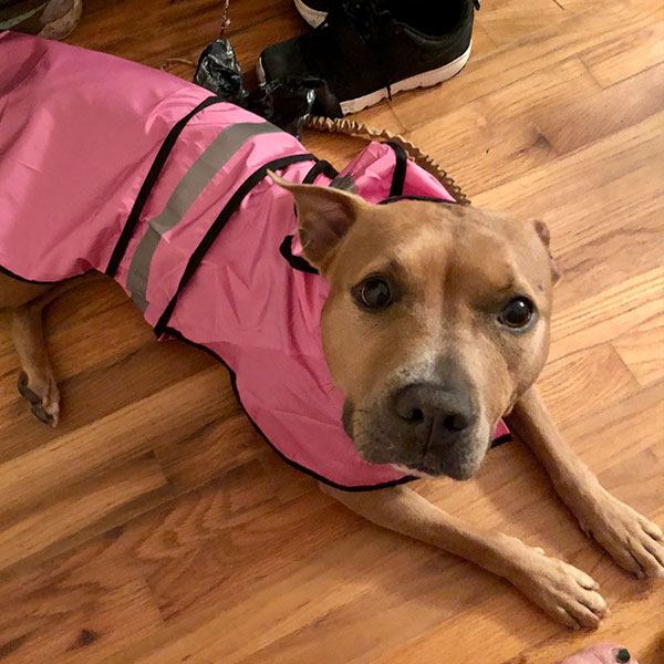 Kate-in-her-pink-jacket