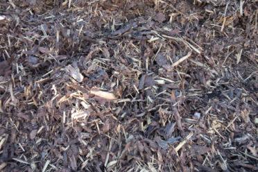 interior mulch