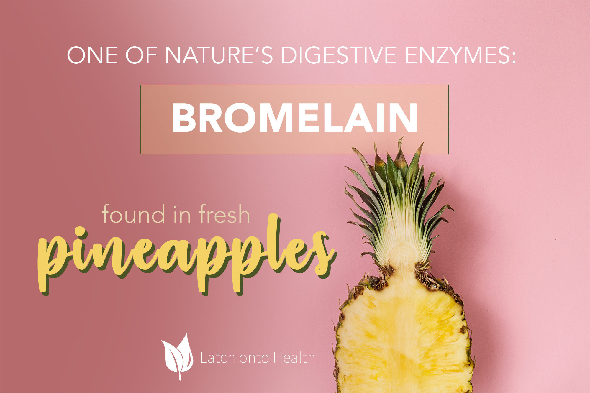 Latch onto Health - How Fresh Pineapple Can Help Your Gut
