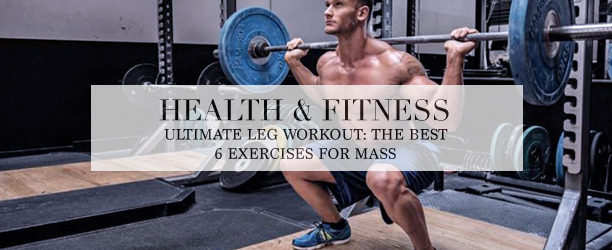 barbell squat - leg workout - best exercise for mass