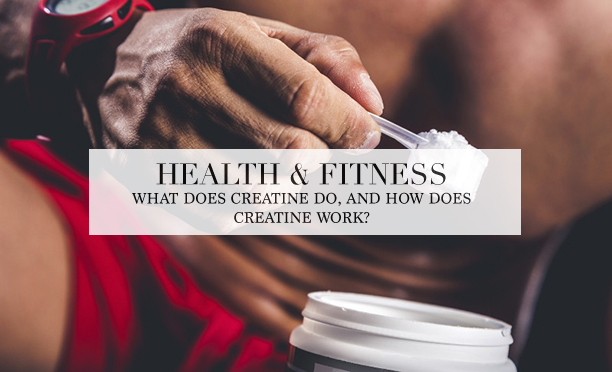 what does creatine do?