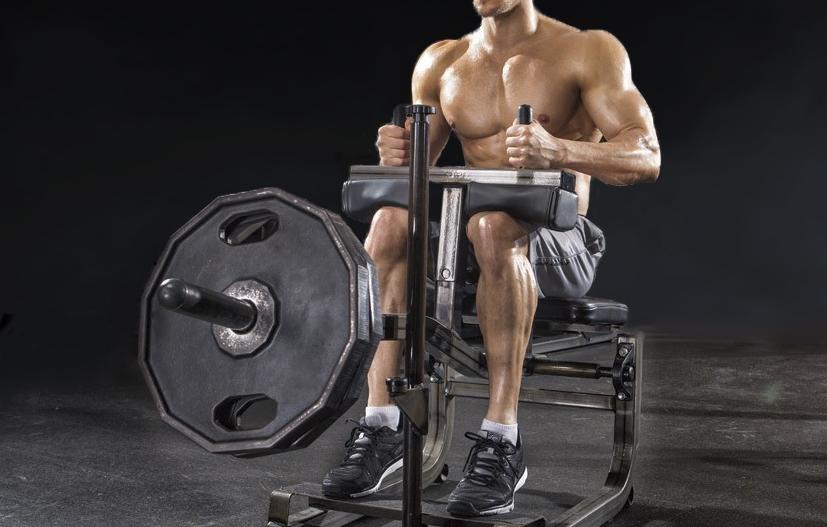seated_calf_raise (leg workout)
