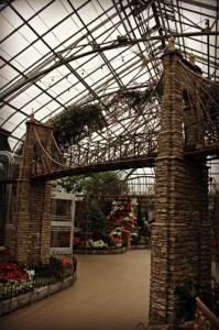 Krohn Conservatory Suspension Bridge