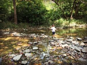 Wolsing Trails Preserve