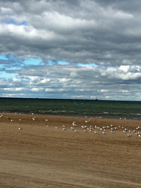 Lake Erie View 1