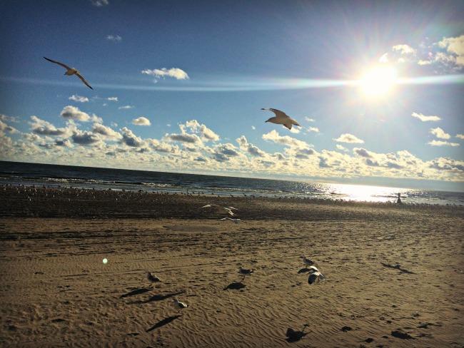 Sandusky Lake Erie