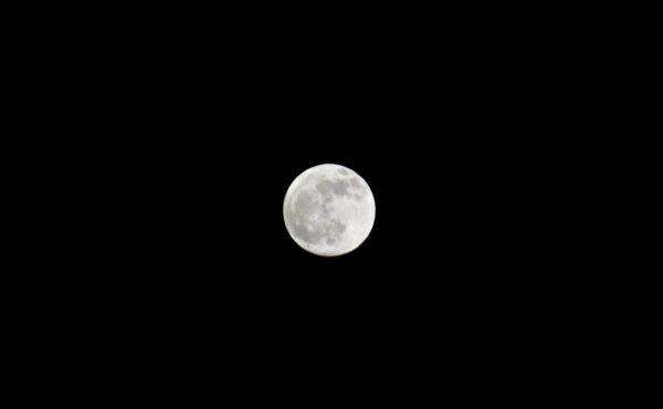 A Full Moon in December