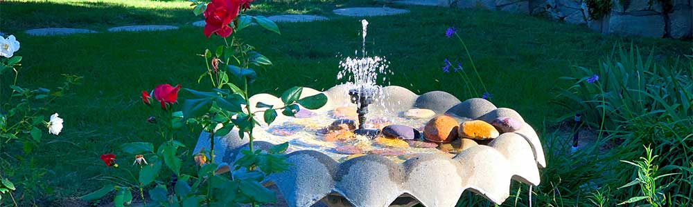 Scallop design fountain with water, rose and lawn