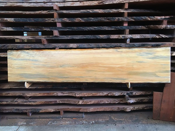 recycled reclaimed salvaged maritime pine perth WA