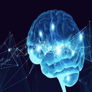 Neuralink-2