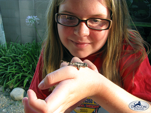 A Girl and a Baby Chameleon
