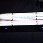 Arcadia quad light fixture