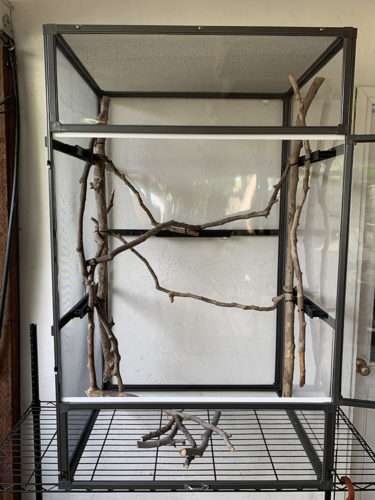 Medium Atrium Cage with Branches