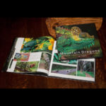 Mountain Dragons book