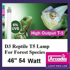 Arcadia 6% UVB bulb