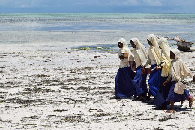 Zanzibar (Photography)