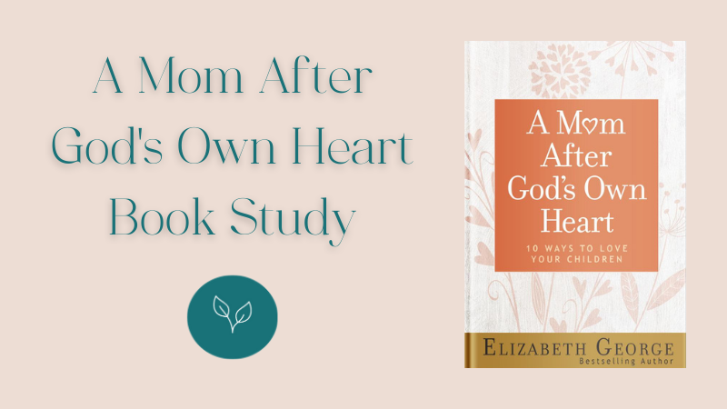 Mom After God's Own Heart Book Study