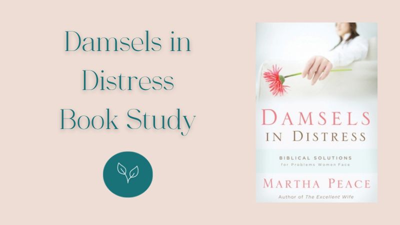 Damsels in Distress Book Study at Central Baptist Church Brantford