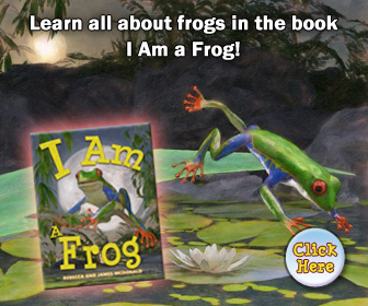 I Am A Frog Book for Kids