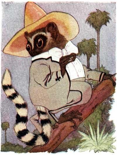 Lemur Poem for Kids