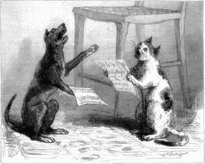 Cat Dog Poems for Kids