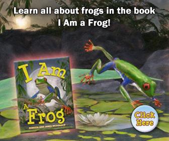 I Am a Frog Book