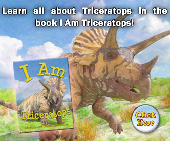 Triceratops Book for kids