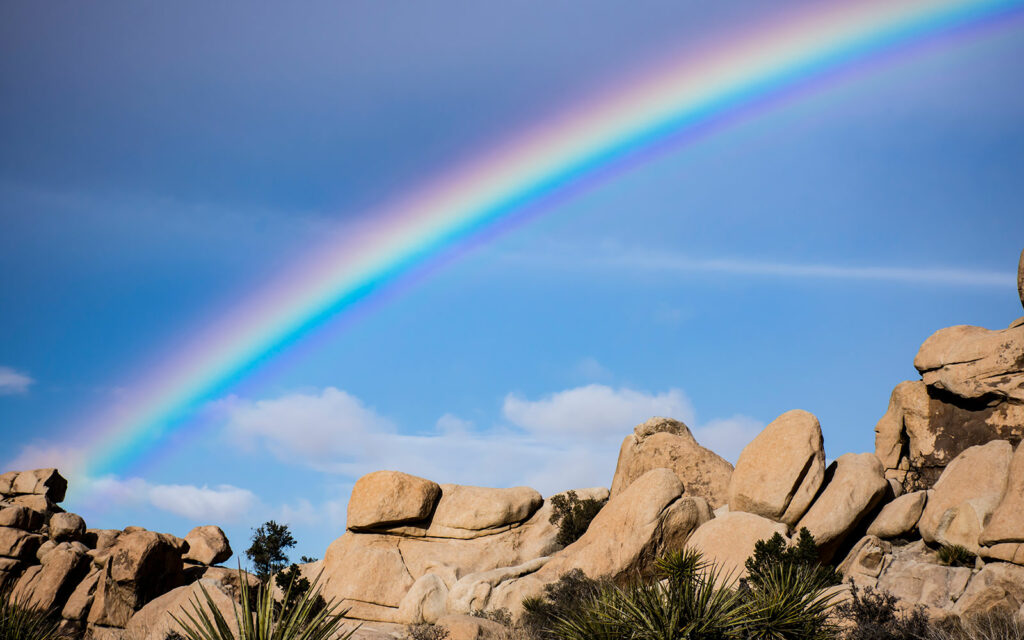 A rainbow shines bright over a rock pile in Joshua Tree National Park.