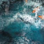 Robert Charon - Surfacing Koi