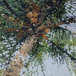 Margaret Juul - Palm Reflecting II