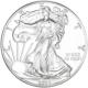 2020 1 oz Silver Eagle Coin