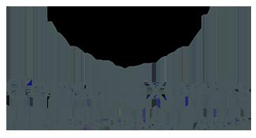 Consult Experts Logo