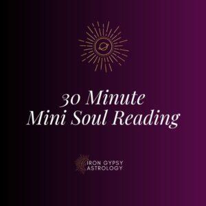Mini-Soul Reading