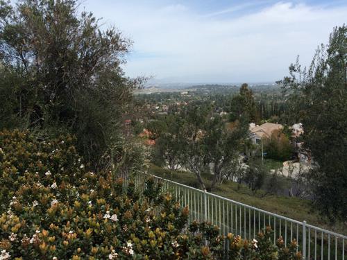 West Hills