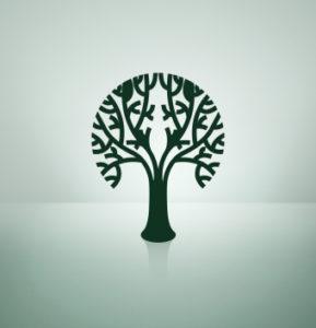 iStock_treeXSmall