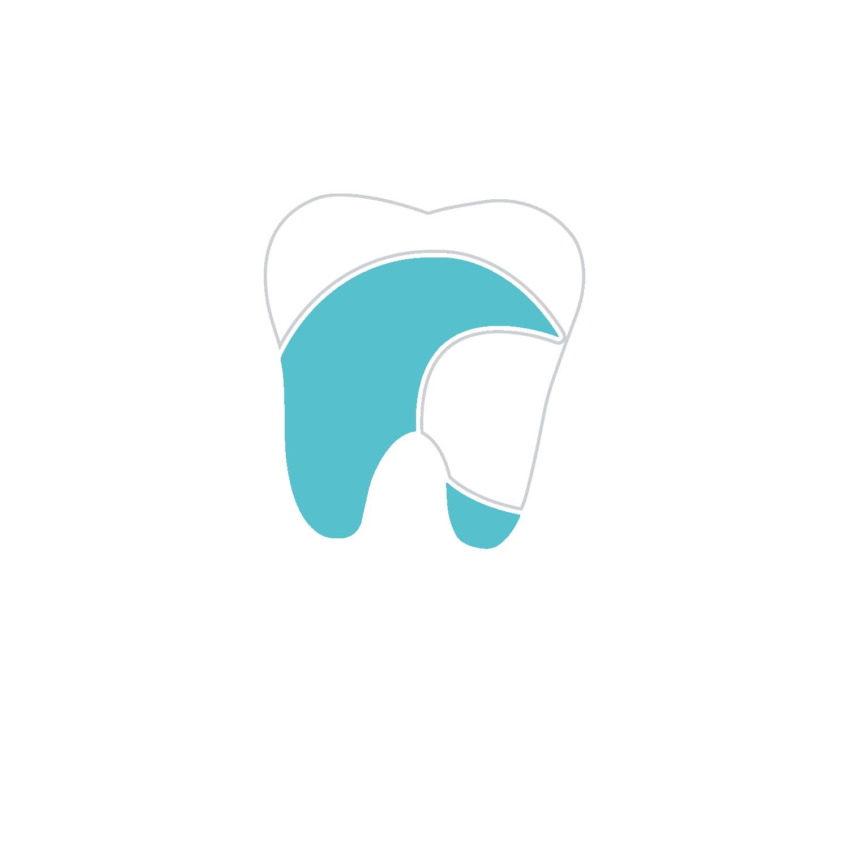 park blvd dentist in pinellas fl
