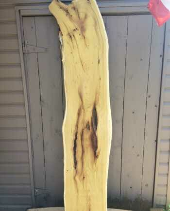 Main image - live edge mulberry slab 14 wide by 72 inches long
