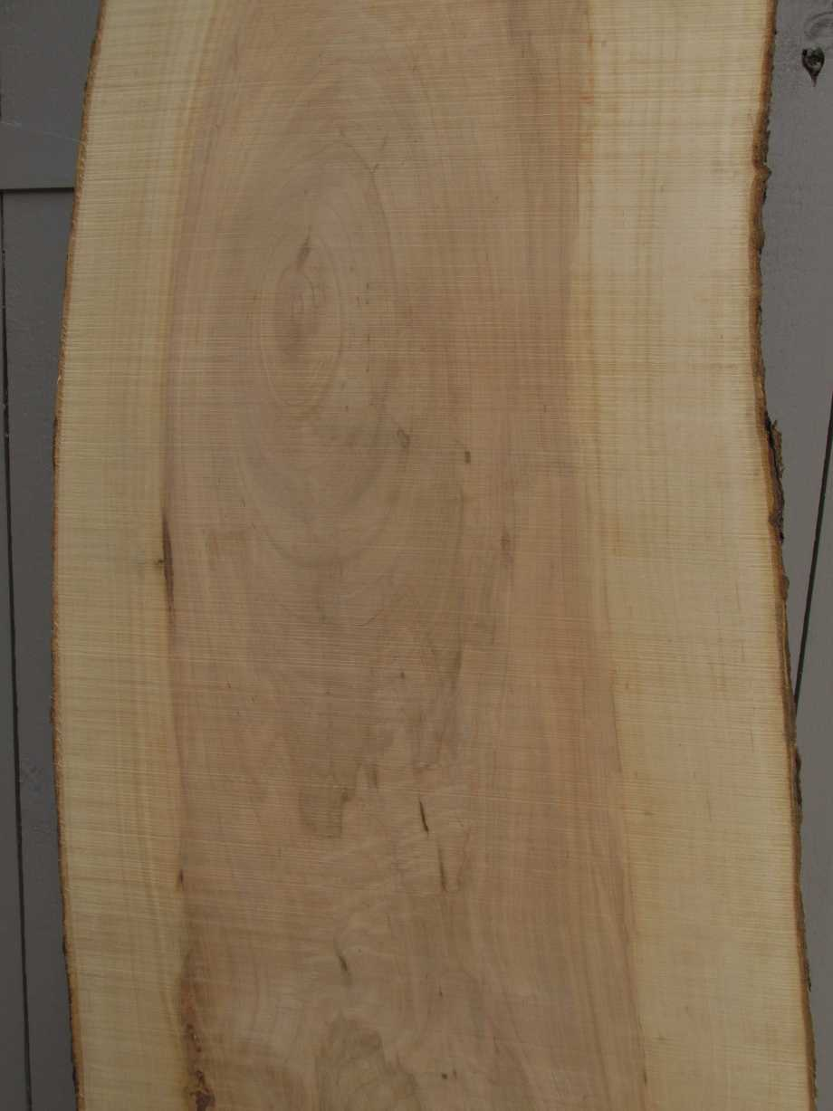 closeup of midle grain - Apple wood live edge slab for sale 15 wide by 72 inches long